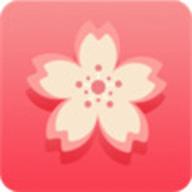 梅花视频app入口