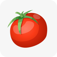 西红柿小说最新小说