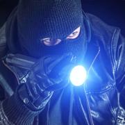 小偷模拟器抢劫游戏免费版 v1.0.5